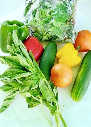 Produce Market Box
